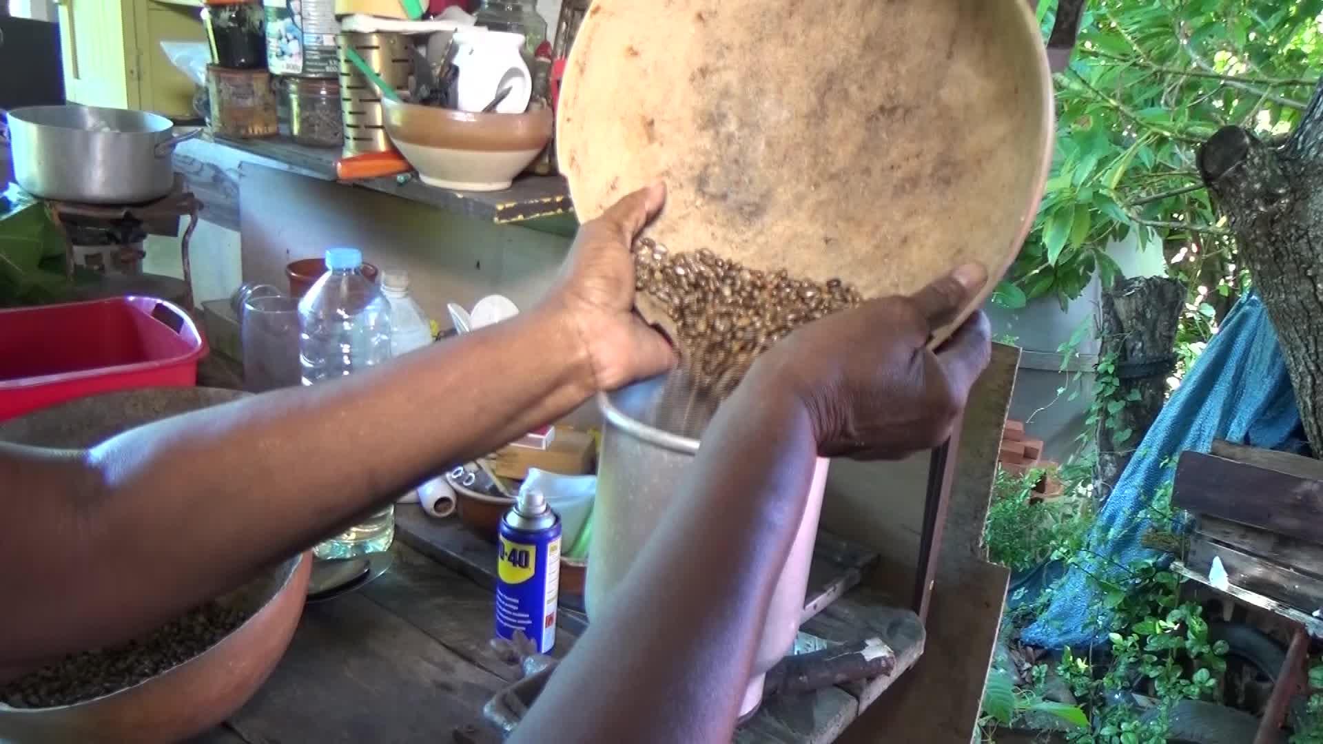 Patrimoine : La fabrication traditionnelle de l'huile de carapate