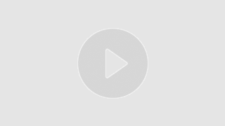 Protection animale : présentation de l'association les Tas de Poils de Marie Galante